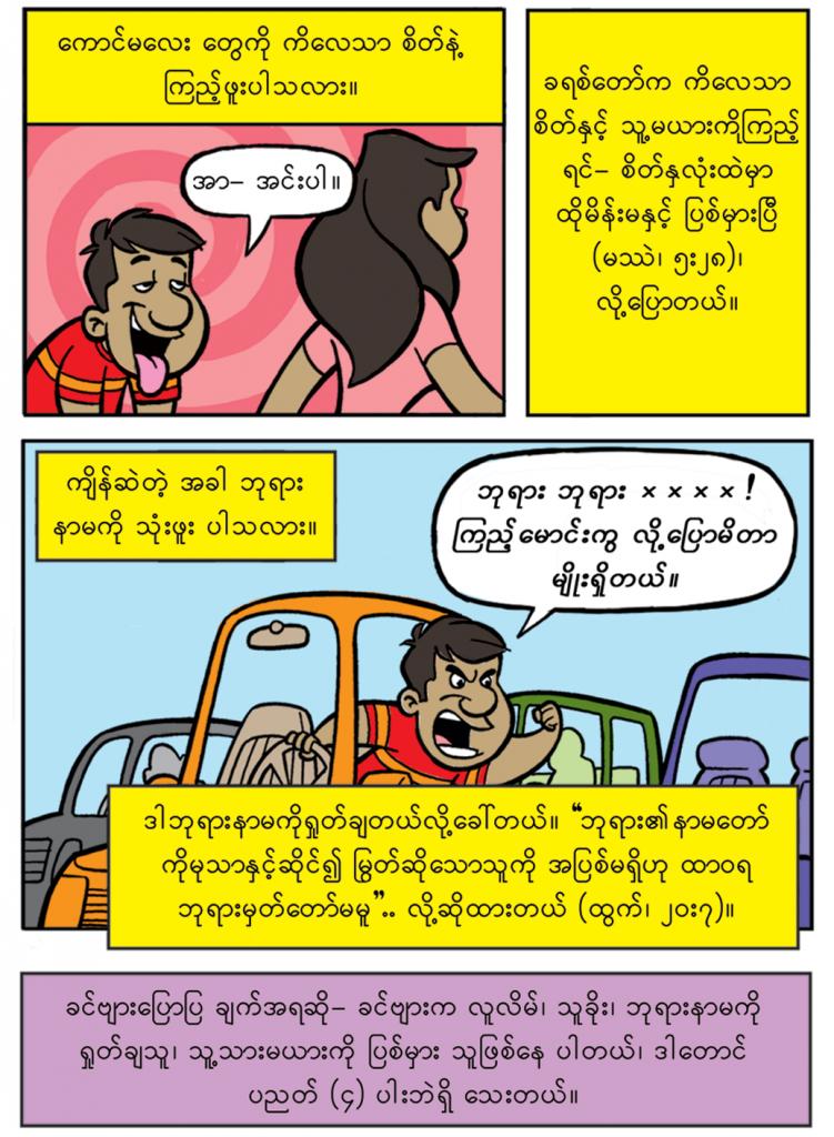 Burmese-HiRes-p3